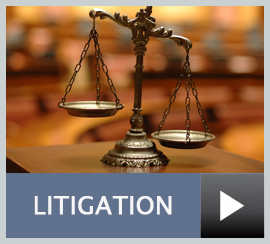 litigation services for Walworth County businesses